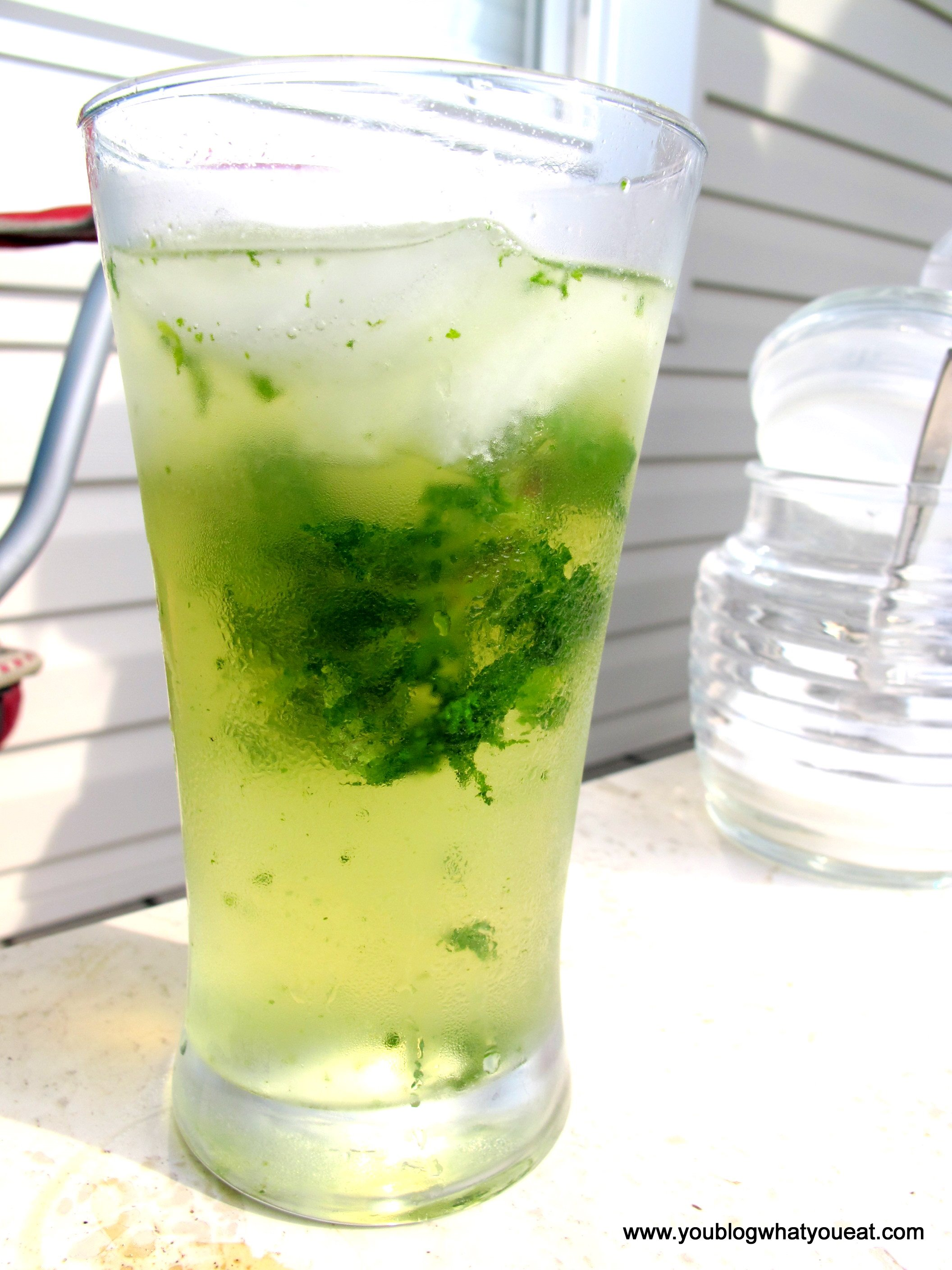 Israeli Juice (Lemon-Limeade With Fresh Mint) Recipe — Dishmaps