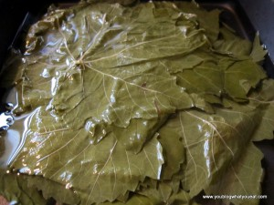 IMG 1268 300x225   Stuffed Grape Leaves (Dolmades/Dolmathes)