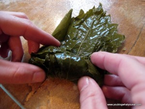 IMG 1277 300x225   Stuffed Grape Leaves (Dolmades/Dolmathes)